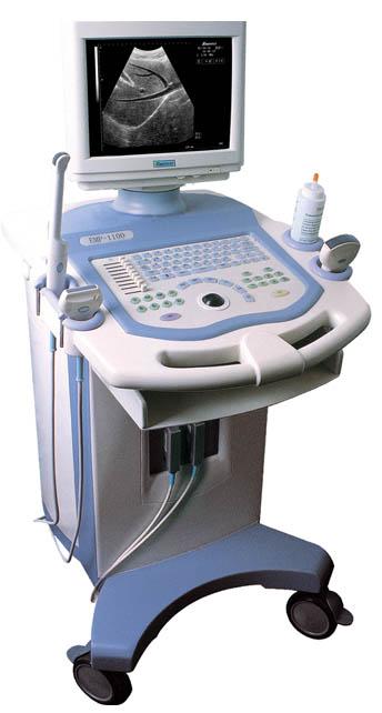 Máy siêu âm EMP- 1100