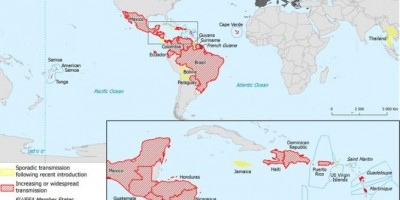 Bản đồ các nước đang có dịch teo não Zika