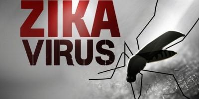 Truyền hình trực tuyến: Cảnh giác cao độ với virut Zika  sốt xuất huyết